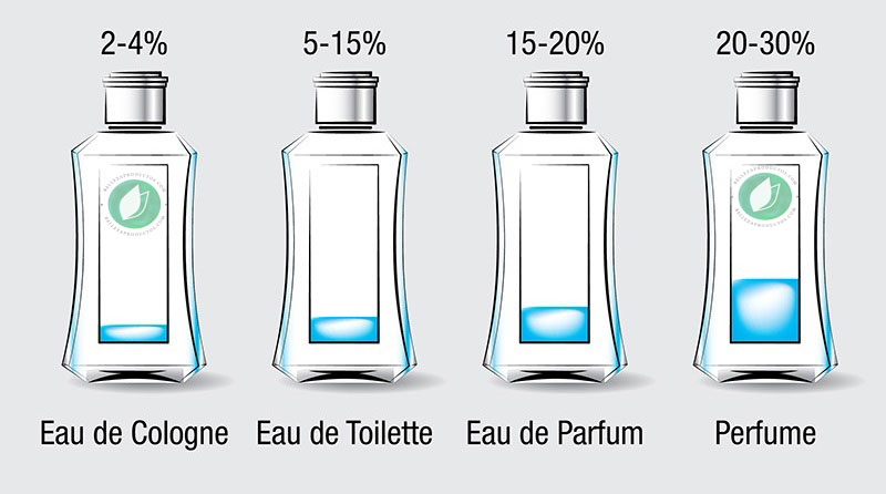 Cuál Es la Diferencia Entre Eau De Parfum Y Eau De Toilette